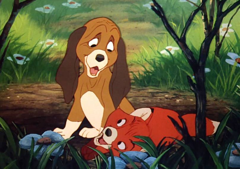 fox-and-hound-1